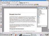 OpenOffice  Linux Bureautique