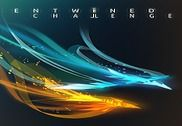 Entwined™ Challenge Jeux