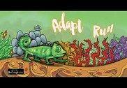 Adapt Run Jeux