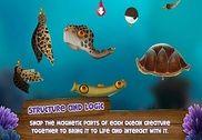 Appy Oceans Bangla Jeux