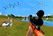 La chasse aux oiseaux Jungle Jeux