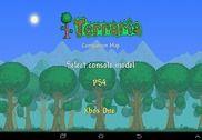 Terraria World Map Jeux