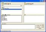 Mini Serveur FTP Internet