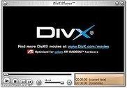 DivX Multimédia