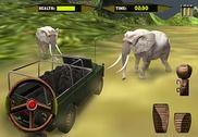 Sauvage Safari Parc animalier Jeux