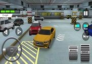 Indian Driving Test Jeux
