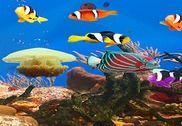 Aquarium et poissons Internet