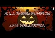 Halloween Pumpkin LWP Internet