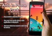 Ants In Phone Screen Prank Maison et Loisirs