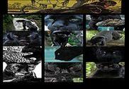 Panther Wallpaper Maison et Loisirs