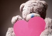 Teddy Bear Wallpaper Hd Maison et Loisirs