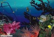 Aquarium Océan 3D Personnalisation de l'ordinateur