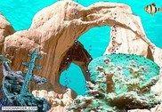 AquaCoral 3D