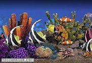 Crawler 3D Tropical Aquarium Screensaver Personnalisation de l'ordinateur