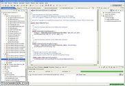 Eclipse IDE pour développeurs Java