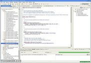 Eclipse IDE pour développeurs Java Programmation