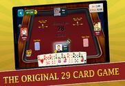 29 Card Game Plus Jeux