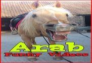 Arab Funny Videos Multimédia