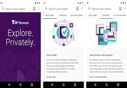 Tor Browser Android Internet