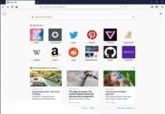 Mozilla Firefox Internet