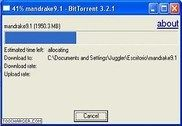 BitTorrent Internet