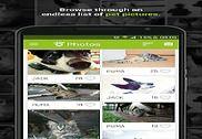 Tractive Photos Multimédia