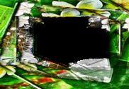 Photo Frames Jili Keys Multimédia