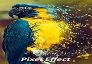 Pixel Effect : 3D Photo Editor Multimédia