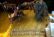 Dragons Multimédia