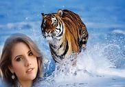 Animal Photo Frame Multimédia