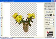 Background Remover Multimédia
