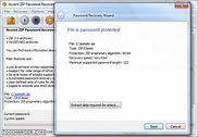 Accent ZIP Password Recovery Utilitaires