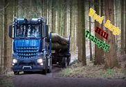 Bois Cargo Hill Transport 2017 Jeux