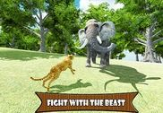 Cheetah Angry Simulator Jeux