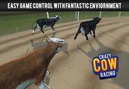 Crazy Cow Racing Jeux