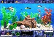 Fish Tycoon Jeux