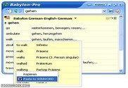 Babylon-Pro Anglais - Français