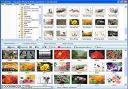 Photo to MPEG Video Converter Freeware