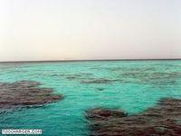 Ecran de Veille : Plongée en Mer Rouge