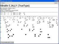 Police True Type Braille