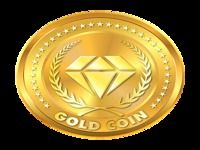 World Gold Shop Accounting