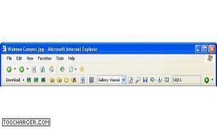 Download Toolbar for Internet Explorer