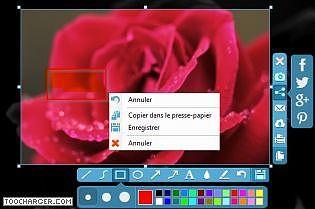Apowersoft Capture d'écran Gratuit Multimédia