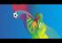 Bannière Euro 2016