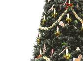 Sapin de Noël, fond blanc Fonds d'écran