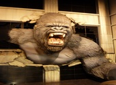King Kong Photos