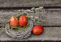 Oeufs de Pâques sur un nid