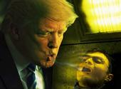Trump harry potter Photos