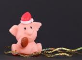 Noël Cochon Fonds d'écran