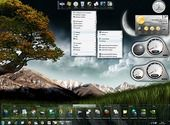 Nexus Dock Personnalisation de l'ordinateur